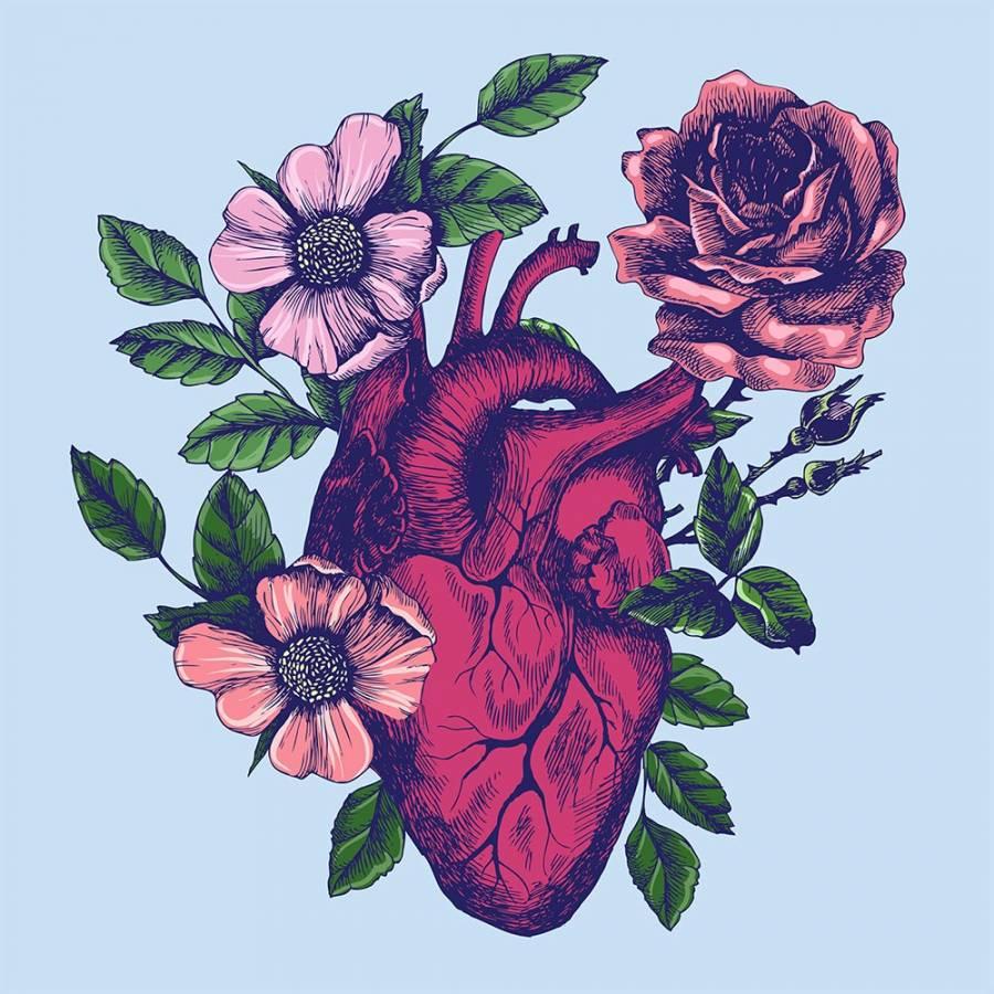 تعلم الرسم كيف ارسم قلب حقيقي تعلم رسم قلب أعزاءنا في هذا الدرس