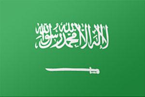 اعلام الدول العربية - علم السعودية