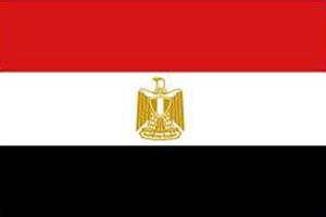اعلام الدول العربية - علم مصر