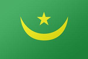 اعلام الدول العربية - علم موريتانيا