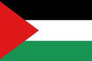 اعلام الدول العربية - علم فلسطين