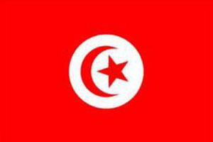 اعلام الدول العربية - علم تنوس