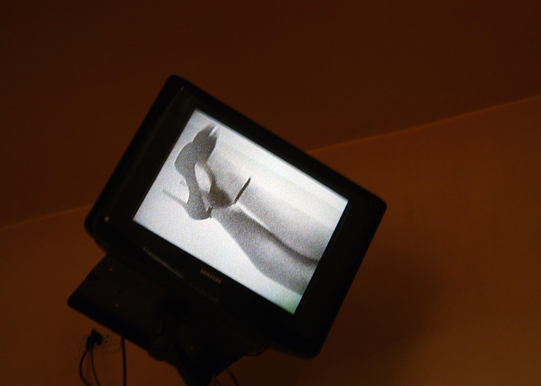 معرض صور نزهة - صورة 4
