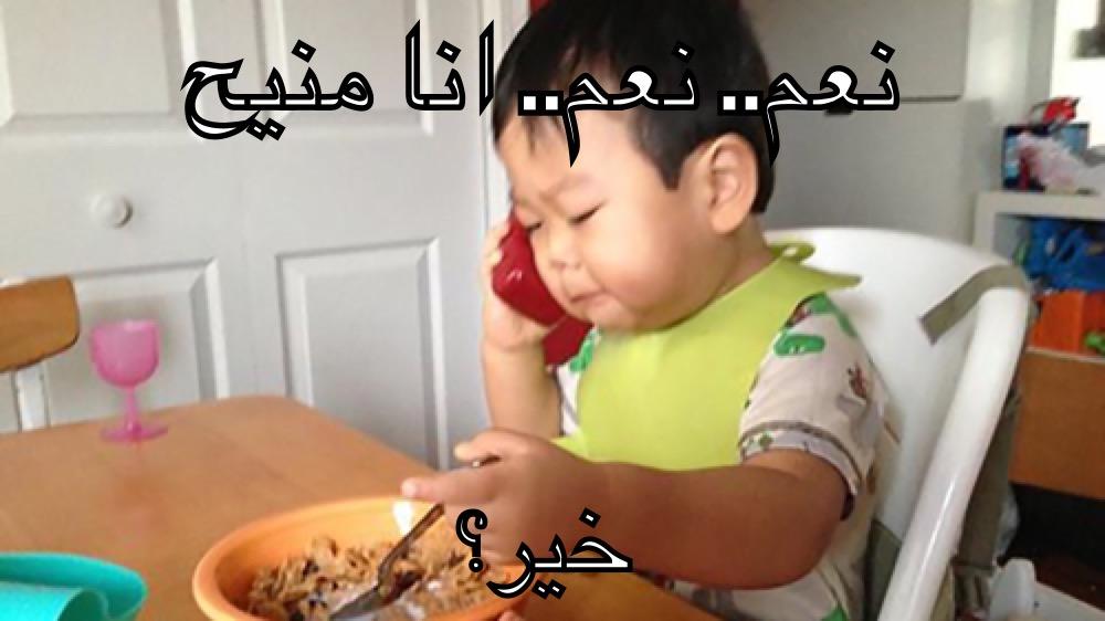 قواعد استخدام الإنترنت في العالم العربي - صورة 5
