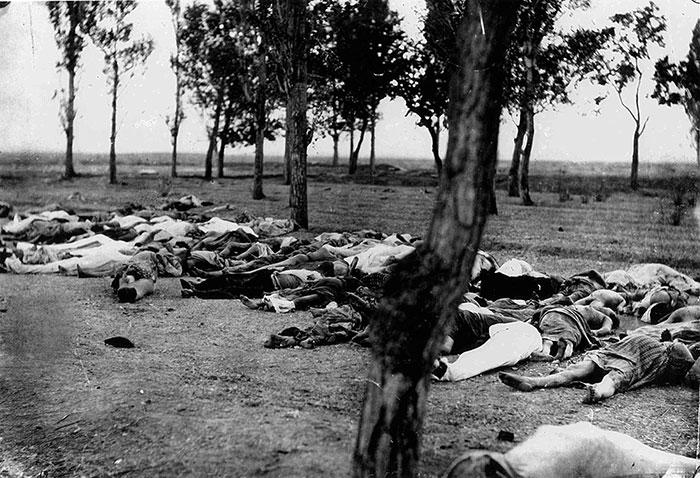 حقائق حول الإبادة الأرمنية - صورة 2