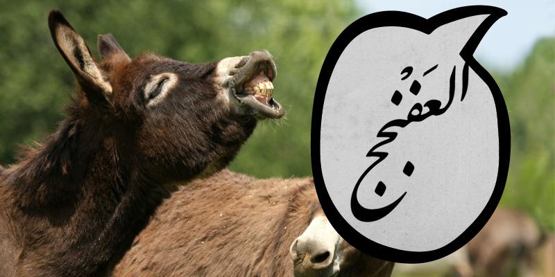 كلمات عربية شبه منقرضة - العفنجج