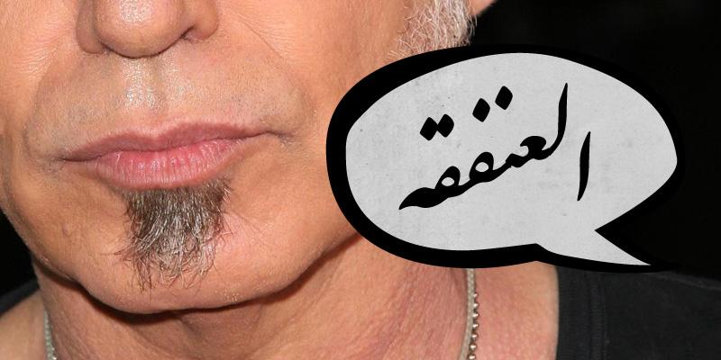كلمات عربية شبه منقرضة - العنفقه