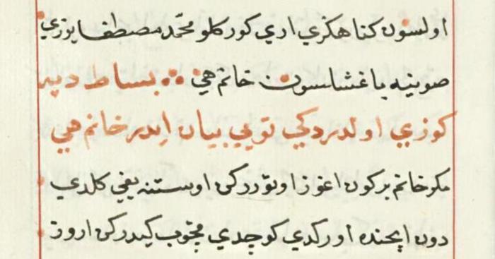 اللغات الأكثر تأثيراً على اللهجات العربية - التركية