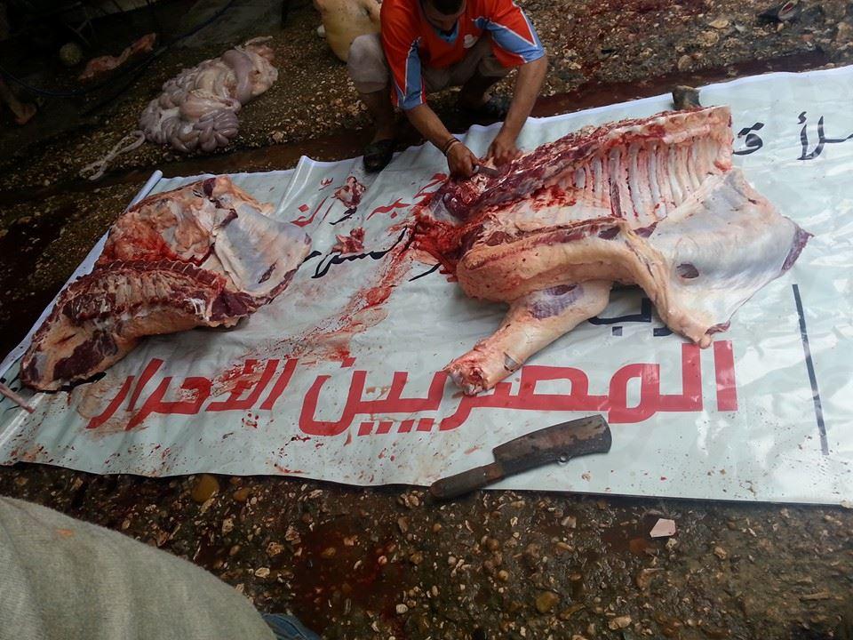 رشاوى مرشحي البرلمان في مصر - المصريون الأحرار