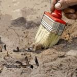 الثقافة المصرية: هل تستسلم للعسكر؟