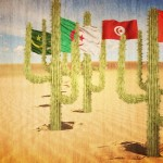 الفتنة الصحراوية والمغرب المستحيل