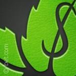 تطبيقات ضرورية لتنظيم أموركم المالية