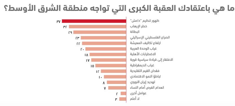 واقع الشباب العربي في 10 نقاط .. استطلاع أصداء للرأي - العقبة الكبرى