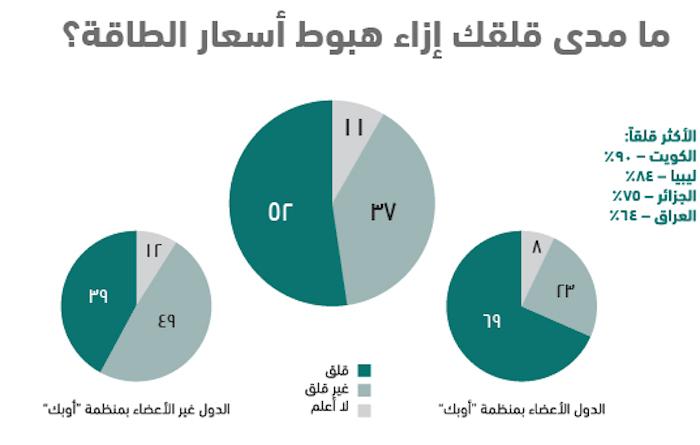 واقع الشباب العربي في 10 نقاط .. استطلاع أصداء للرأي - أسعار الطاقة