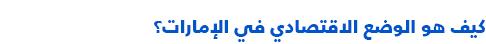 السياسة في الإمارات العربية المتحدة - الوضع الاقتصادي
