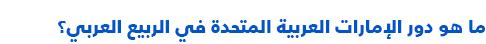 السياسة في الإمارات العربية المتحدة - دور الإمارات في الربيع العربي