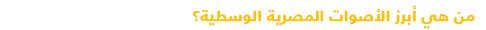 دليل مبسط للتعرف على السياسة في مصر - الأصوات المصرية الوسطية