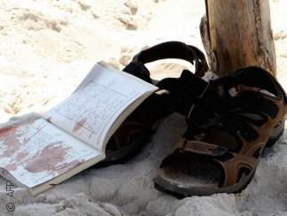 كيف تفاعل المغردون مع عمليتي داعش الإرهابيتين في الكويت وتونس؟