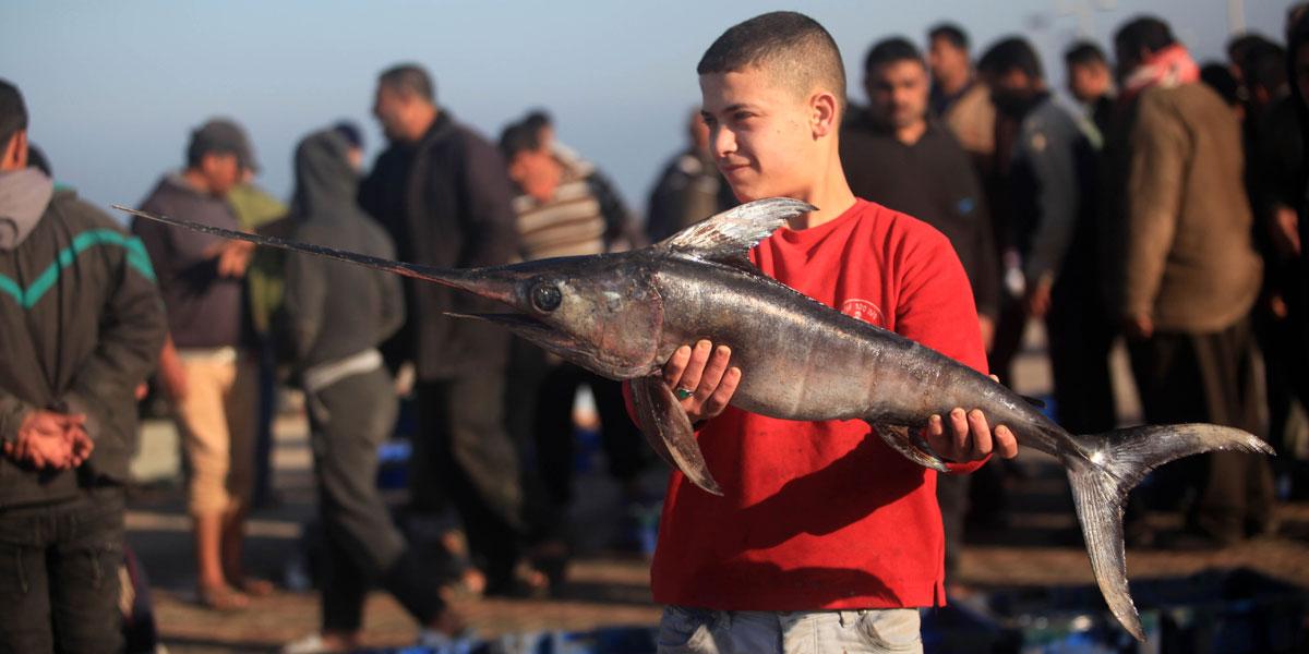 الحصار الإسرائيلي يقضي على قطاع صيد السمك في غزة