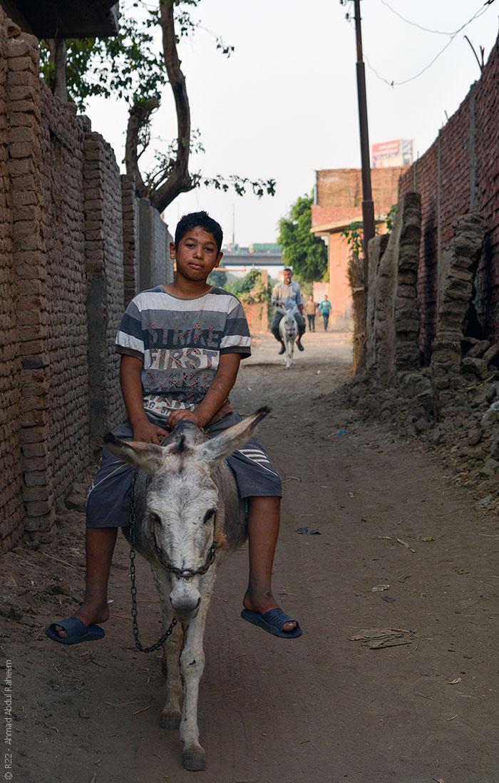 قرية جزيرة الدهب المصرية - صورة 4