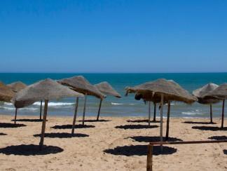 تونس تعلن حالة الطوارئ: هل انتهى زمن الربيع؟