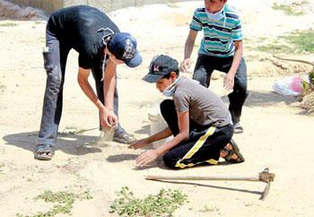 قصة من سيناء - حديقة الأمل لقطة تظهر المبادرة