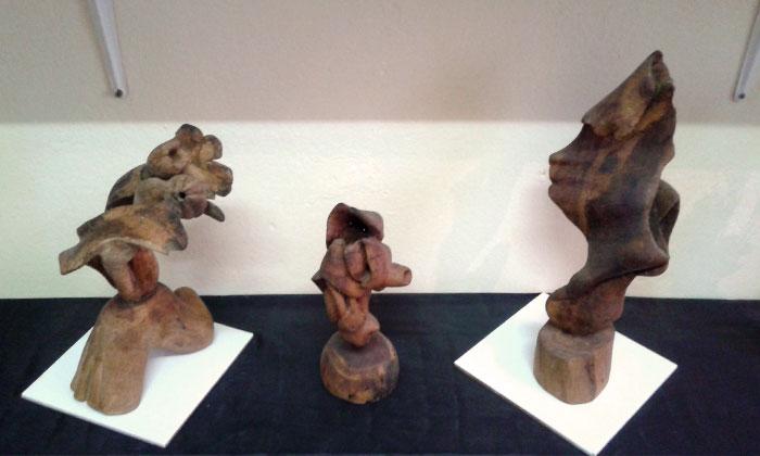 الفن في تونس - فن يحاول المحافظة على الطبيعة - زيد2