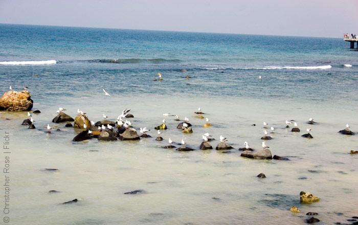 السياحة في السعودية - شواطئ جدة