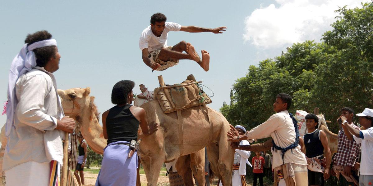 تعرّفوا إلى رياضة القفز فوق الجِمال في اليمن