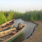 أهم خمس وجهات سياحية في موريتانيا