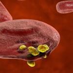 العلماء يكتشفون صدفة علاجاً ممكناً للسرطان
