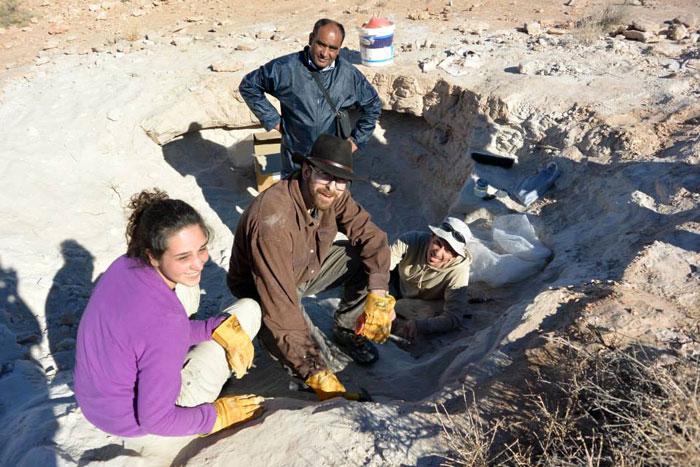 اكتشاف هياكل ديناصورات في جنوب تونس - صورة 1