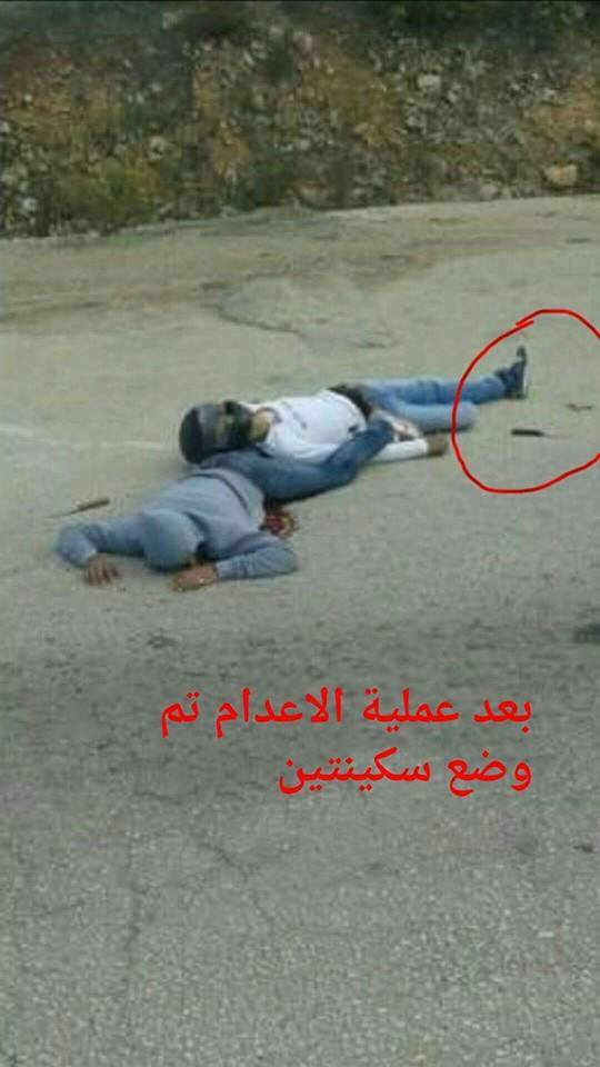 كشف زيف روايات إسرائيل باستخدام سلاح الإعلام الحديث - صورة 2