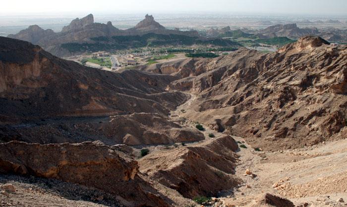 روائع الطبيعة في أبوظبي - صورة 4