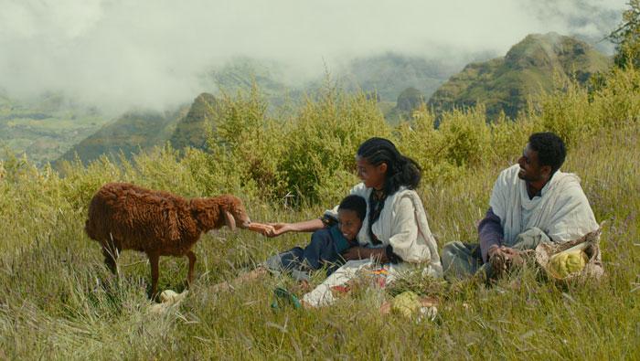 مهرجان قرطاج السينمائي - Lamb فيلم