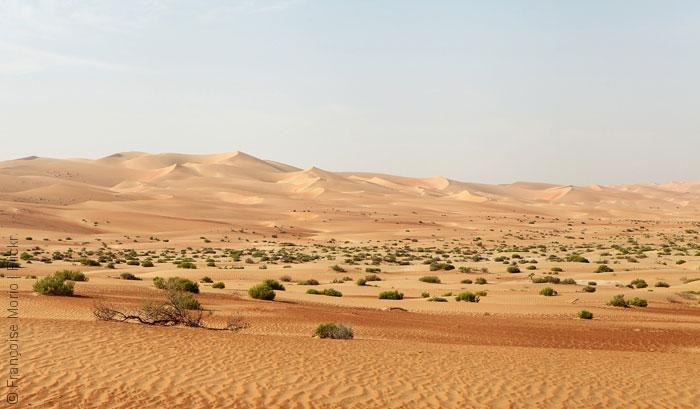 روائع الطبيعة في أبوظبي - صورة 1