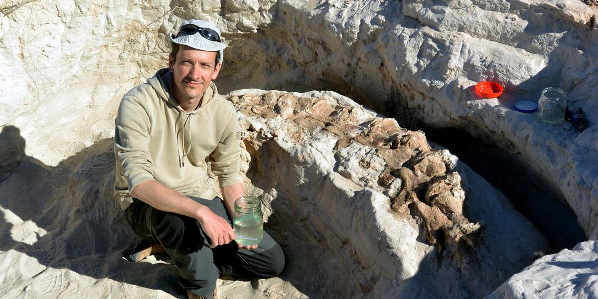 اكتشاف هياكل ديناصورات في جنوب تونس قلَبَ المنطقة رأساً على عقب