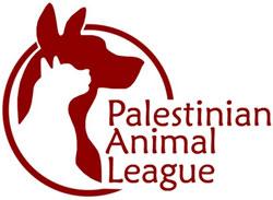 الحيوانات الأليفة في العالم العربي - بال