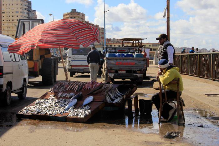 حي المكس في الإسكندرية - بائع سمك على الطريق