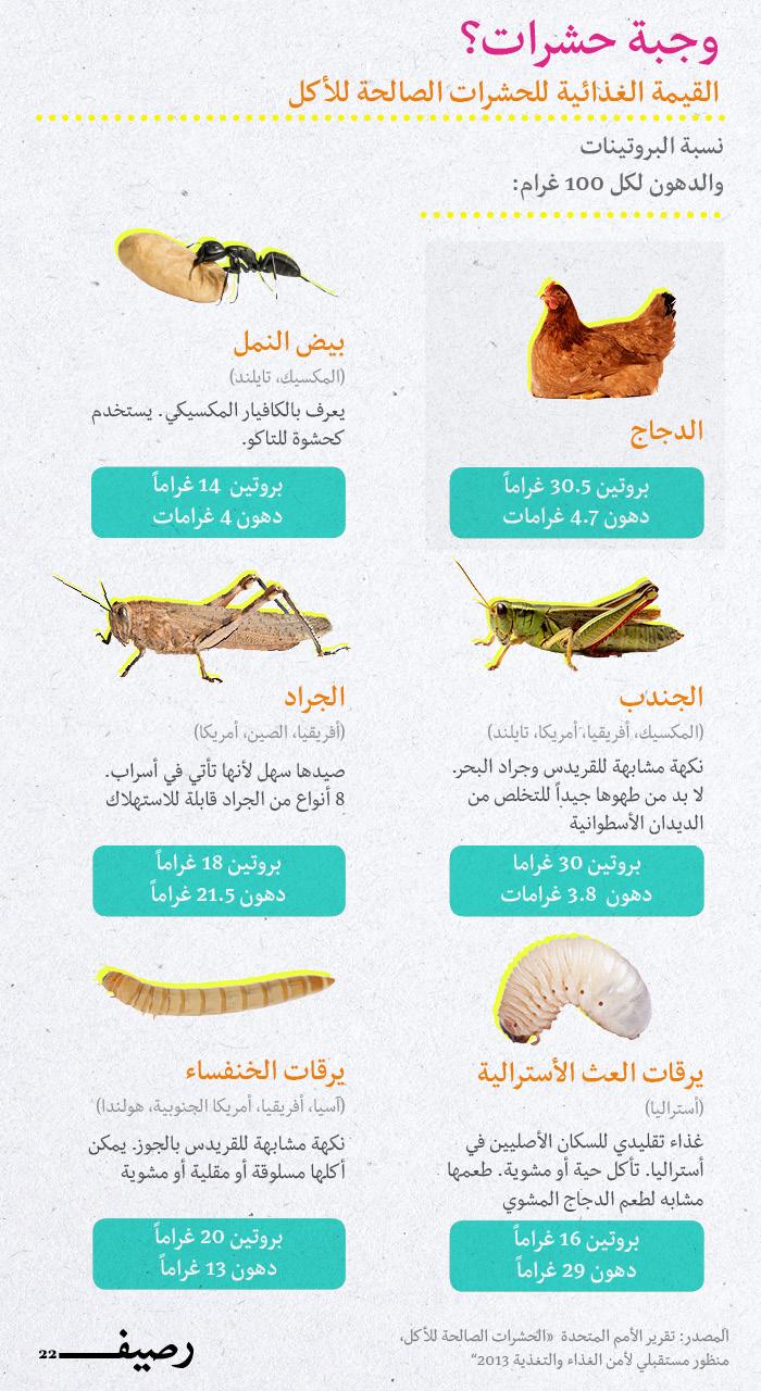 الحشرات طعام الإنسان - الفيم الغذائية
