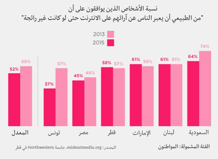 وسائل الإعلام في العالم العربي - التعبير عن الرأي على الانترنت