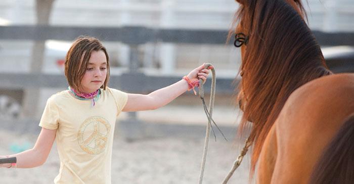 انشطة سياحية في دبي - حصان