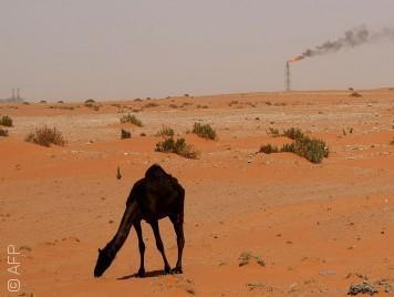 هل تحققت نبوءة روحاني النفطية وبدأت السعودية تتألّم؟