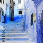 شوارع العالم العربي الملونة