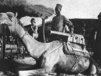 يعتزّون بدينهم وأصلهم ويجب معاملتهم بالقوّة... هكذا وصف المستشرقون الموريتانيين