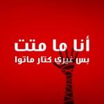 بعض المنظمات العاملة على حقوق المرأة التي لا بد من متابعتها في العالم العربي