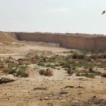 جولة بالصور داخل محمية وادي دجلة جنوب القاهرة