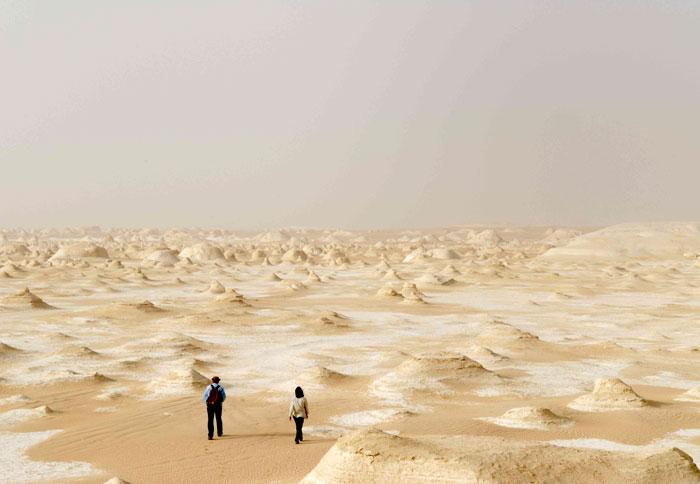 صحراء بيضاء