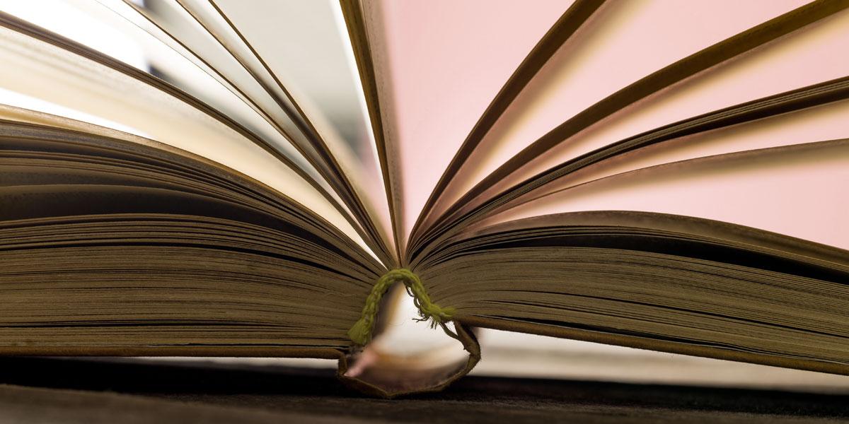 النبي محمّد في الأدب المصري