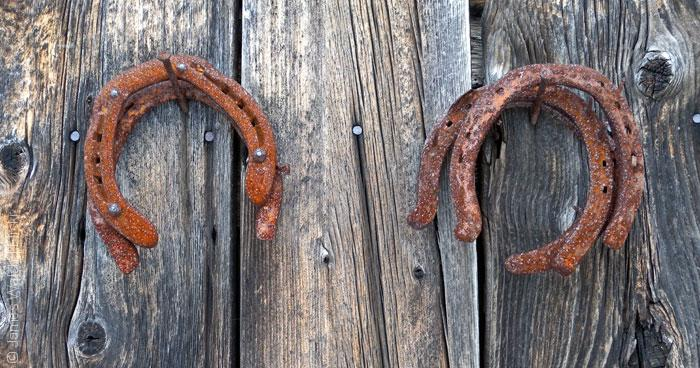 Horseshoes_James-Walsh_Flickr